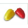 Семена сладкого перца ЯНИКА F1 фирмы Китано