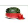 Семена арбуза KS 8777 F1 фирмы Китано